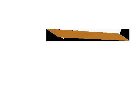 Oranssi lippa