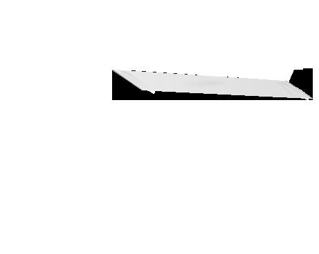 Valkoinen lippa